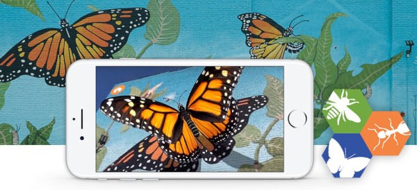 Augmented Reality in Museums: Philly Insects AR